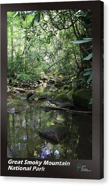 Great Smoky Mountains Np 012 Canvas Print by Charles Fox