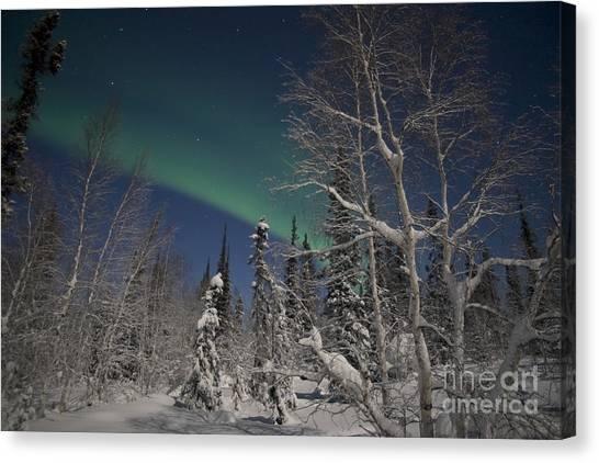 Northwest Territories Canvas Print - Green Aurora At Prelude Lake by Yuichi Takasaka