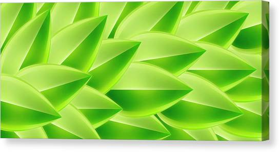 Green Feathers, Full Frame Canvas Print