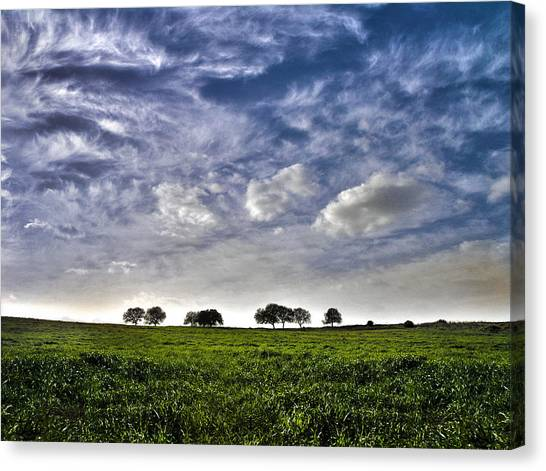Green Fields And Blue Sky Canvas Print
