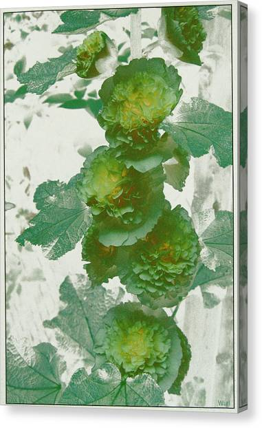 Green Hollyhocks Canvas Print