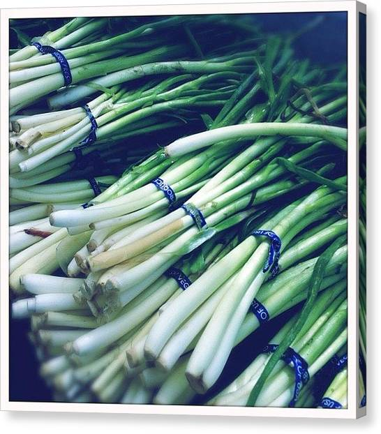 Onions Canvas Print - Green Onions At The #farmersmarket by Shana Ray