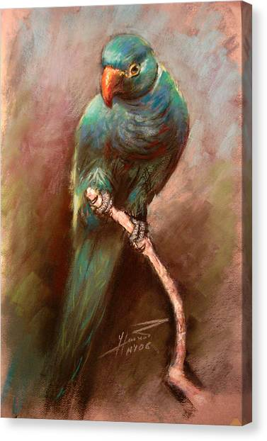 Parrots Canvas Print - Green Parrot by Ylli Haruni