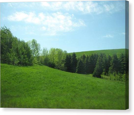 Greener Pastures Canvas Print by Harry Wojahn