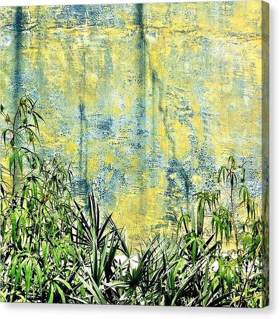 Apples Canvas Print - Greenery by Apple