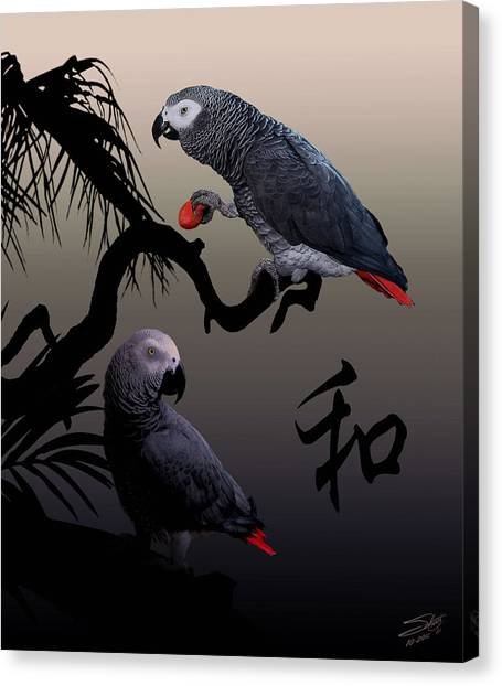 Grey Parrot Harmony Canvas Print