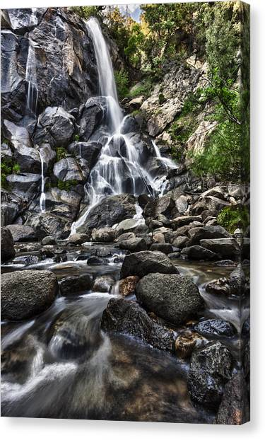 Grizzly Falls Canvas Print by A A
