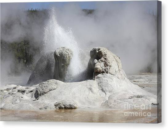 Yellowstone Caldera Canvas Print - Grotto Geyser Eruption, Upper Geyser by Richard Roscoe