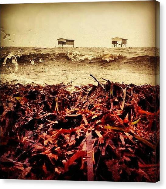 Hurricanes Canvas Print - #groundlevelseries For @oyfe When He by Beth Paulsen