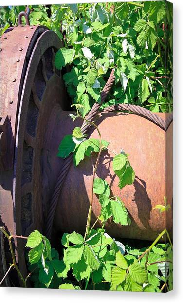 Caterpillers Canvas Print - Grown Over by Steve McKinzie