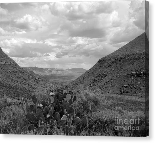Guadalupe Mountain View Canvas Print