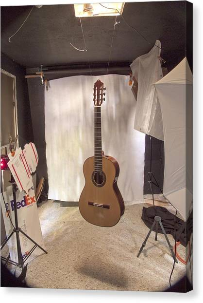 Guitar Canvas Print by Larry Darnell