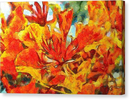 Gulmohar Canvas Print
