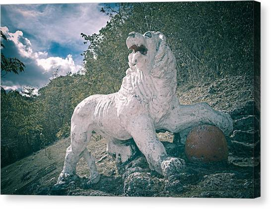 Gun Hill Lion Canvas Print