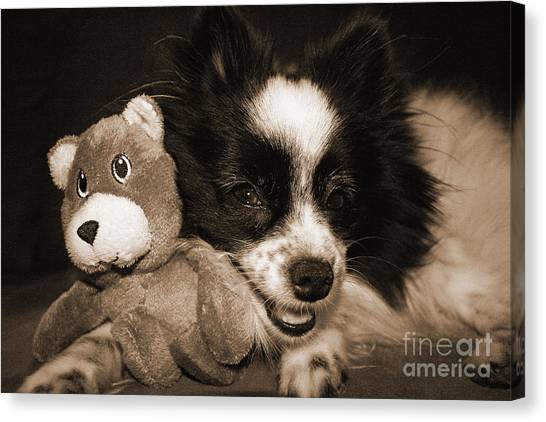 Gypsy With Billy Beaver Canvas Print