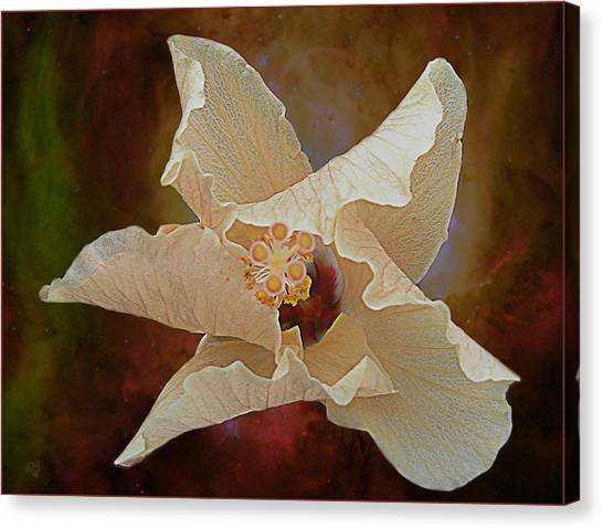 Hibiscus Floats In Space Canvas Print