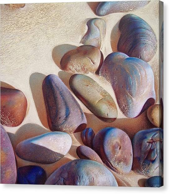 Hallett Cove's Stones - Detail Canvas Print by Elena Kolotusha