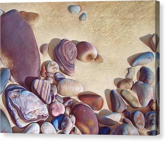 Hallett Cove's Stones Canvas Print