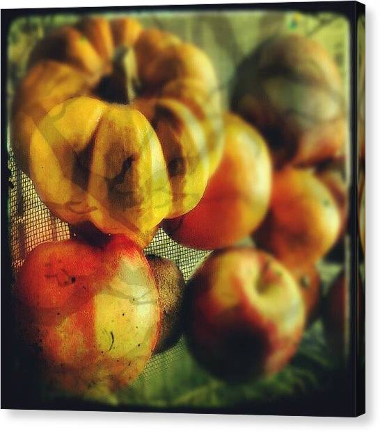 Fruit Baskets Canvas Print - halloween Horrors by Alexandra Cook