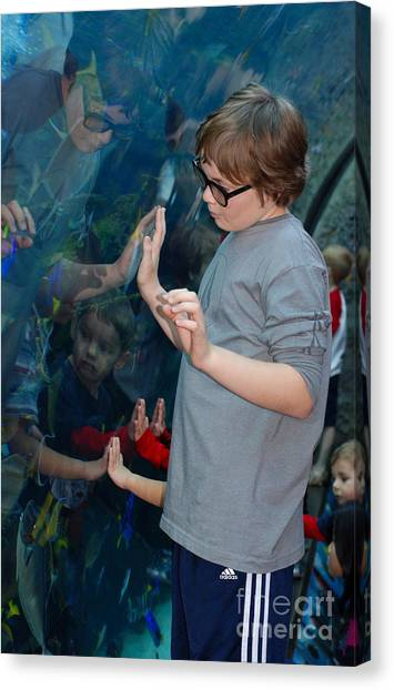Hands Across The Water Canvas Print by Andrea Simon