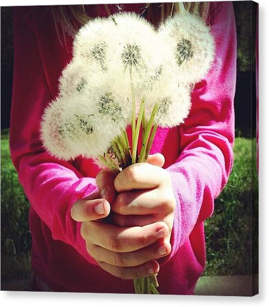 Bouquet Canvas Print - Hands Full Of Wishes by Misty D