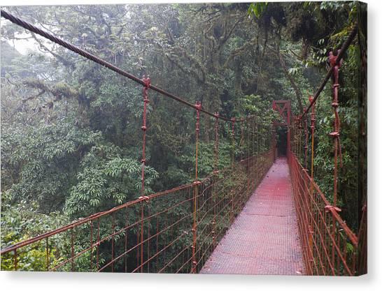Monteverde Canvas Print - Hanging Bridge At Monteverde Cloud Forest Reserve by Kathrin Ziegler