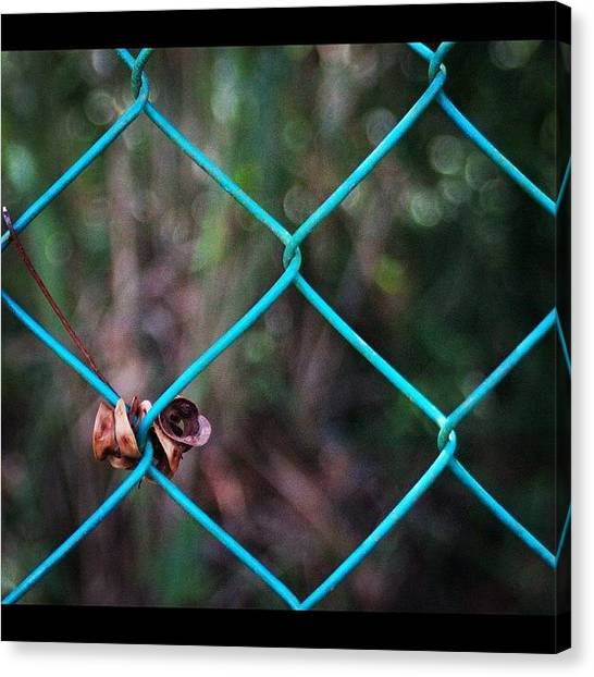 Political Canvas Print - Hanging To The Fence, By My Lens by Ahmed Oujan