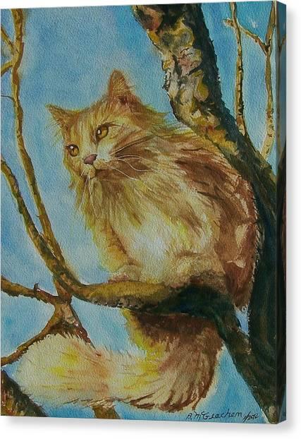 Hanserelli Canvas Print by Barbara McGeachen