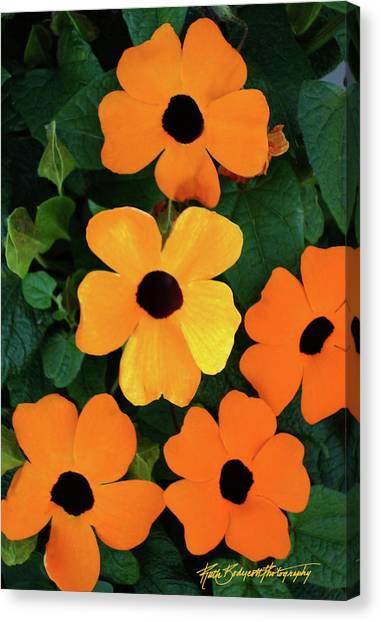 Happy Orange Canvas Print by Ruth Bodycott