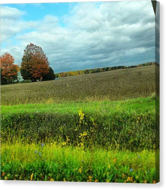 Thanksgiving Canvas Print - Happy Thanksgiving Weekend! by Mr. B