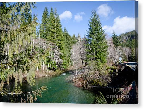 Rivers Canvas Print - Harris Creek Vancouver Island Interior River British Columbia by Andy Smy