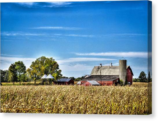 Harvest Time Canvas Print by Dan Crosby