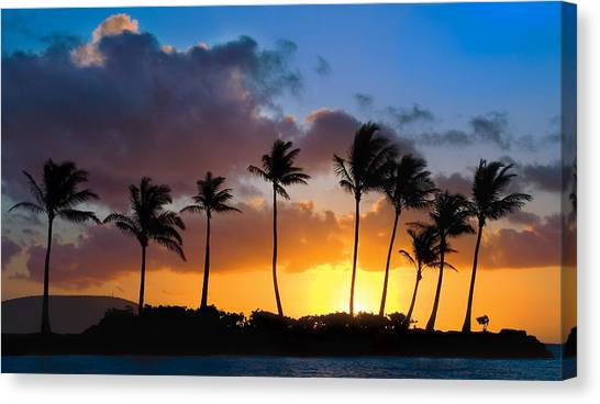 Palm Trees Sunsets Canvas Print - Hawaii Sunset Silhouette by Dave Dilli