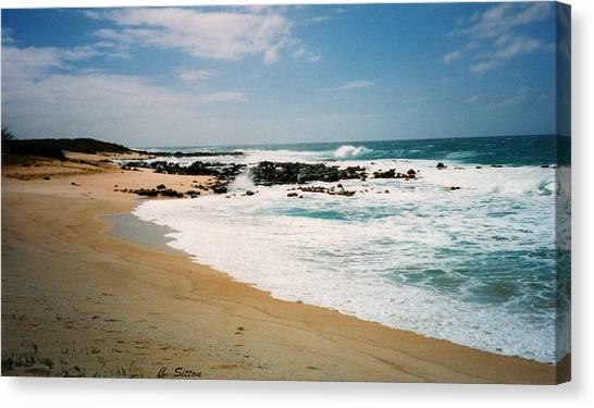 Hawaiian Shore Canvas Print