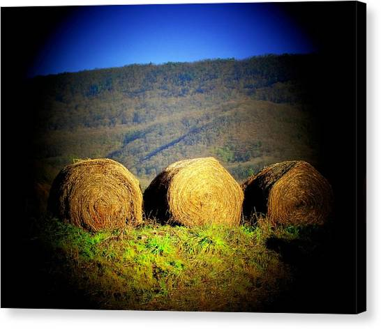 Hay Rolls On Mountain Canvas Print by Michael L Kimble