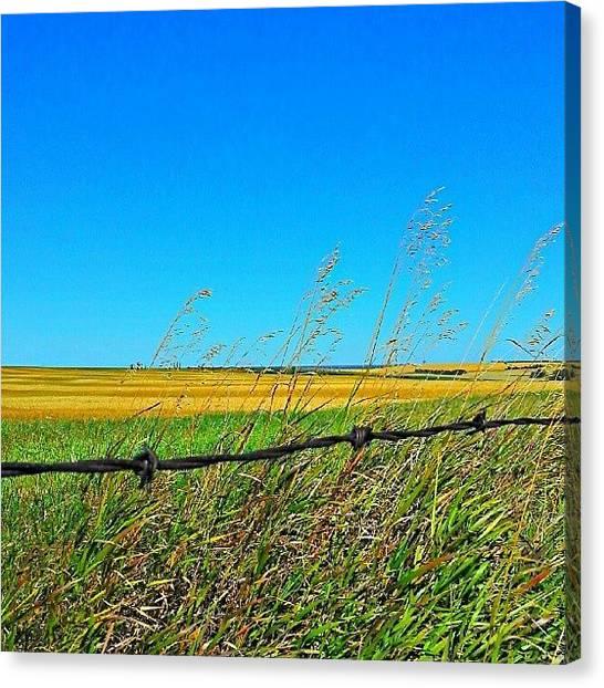 Saskatchewan Canvas Print - #hdr #saskatchewan #prairie #landscape by Michael Squier