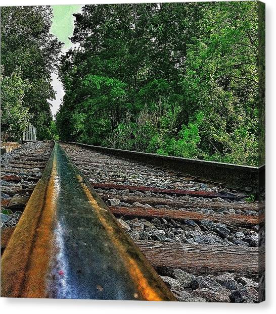 Tigers Canvas Print - Head On The Railroad by Matthew Barker
