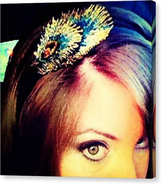 Peacocks Canvas Print - Headband by Claudia Schieve