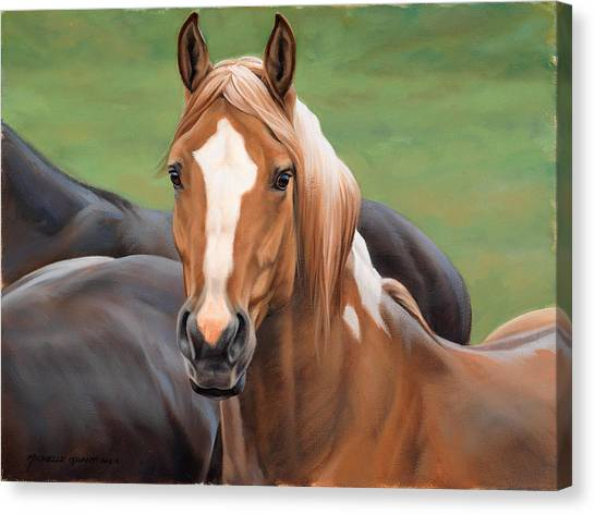 Equestrian Canvas Print - Head's Up by JQ Licensing