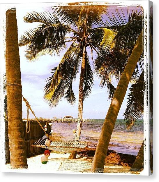 Palm Trees Canvas Print - Heaven In A Hammock by Michele Green Williams
