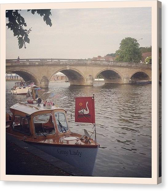 Swans Canvas Print - Henley Upon Thames by Emma Hollands