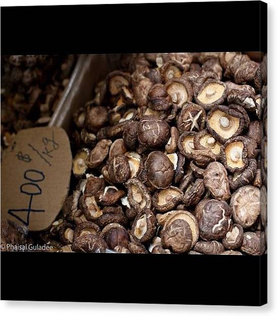 Medicine Canvas Print - #herb #mushroom #chinese #closeup by Phaisal Guladee