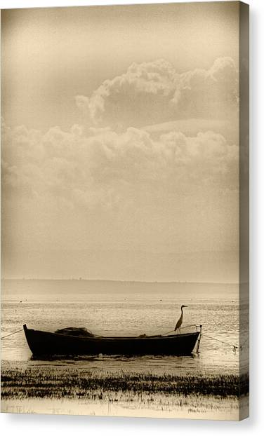 Heron On The Boat Canvas Print