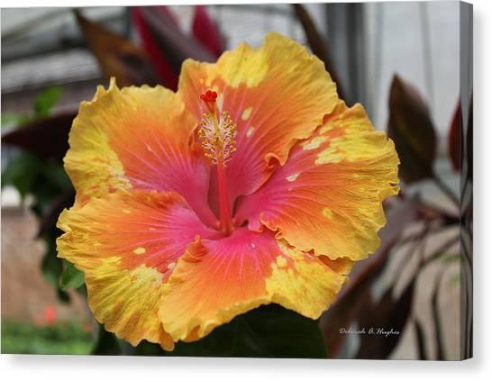 Hibiscus Yellow Canvas Print