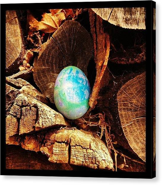 Large Birds Canvas Print - Hiding Easter Eggs For My Niece To Find by Marc Crow
