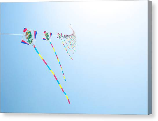 High Flying Kites Canvas Print by Flash Parker