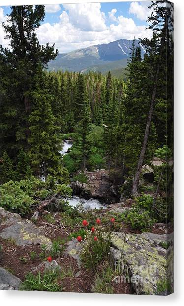 Hiking In Colorado Canvas Print