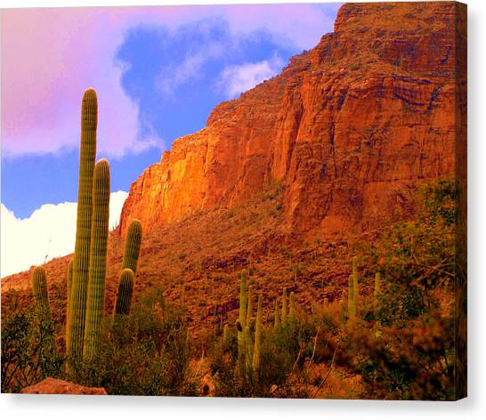 Hiking The Canyon Canvas Print