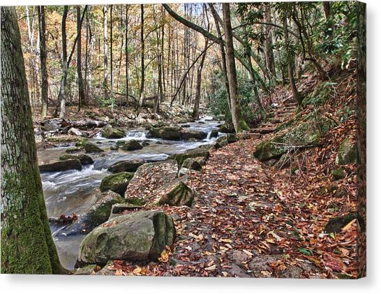 Hiking Trail To Cascade Falls Canvas Print