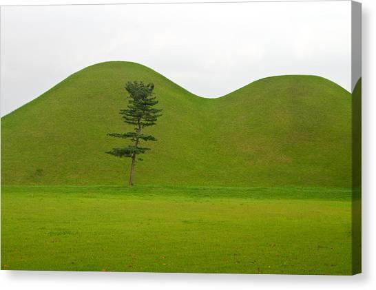 Hill Tombs And Tree Korea Canvas Print by Gabor Pozsgai